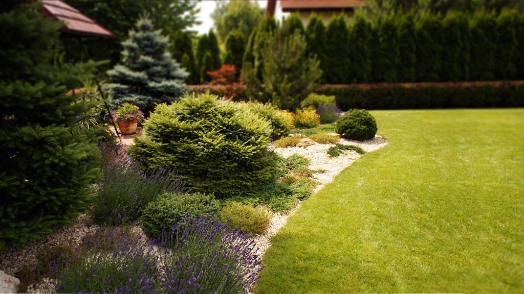 Ogród Przydomowy W Rzeszowie Projektowanie Ogrodów